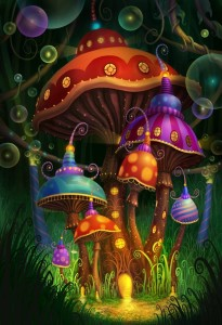 Magic Mushrooms Blog